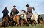 CHEVAL MONGOL - cavaliers (Chine : Mongolie intérieure)