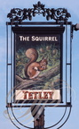 CHESTER (GB) -  Enseigne : The Squirrel (l'écureuil)