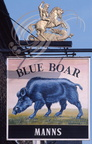 PETERBOROUGH (GB) - Enseigne : Blue Boar (sanglier bleu)